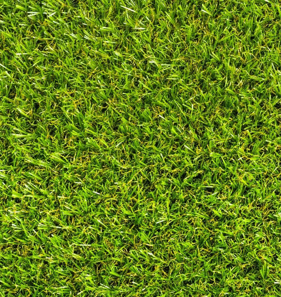 prato-erba-sintetica-giardino-terrazzo-DBA-giardini